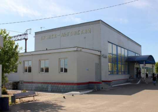 Брянский суд наказал «РЖД» за обиженных пассажиров-инвалидов