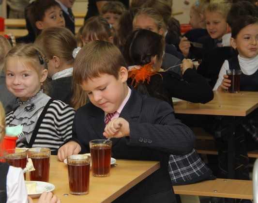Брянские чиновники раскрыли денежные секреты питания школьников