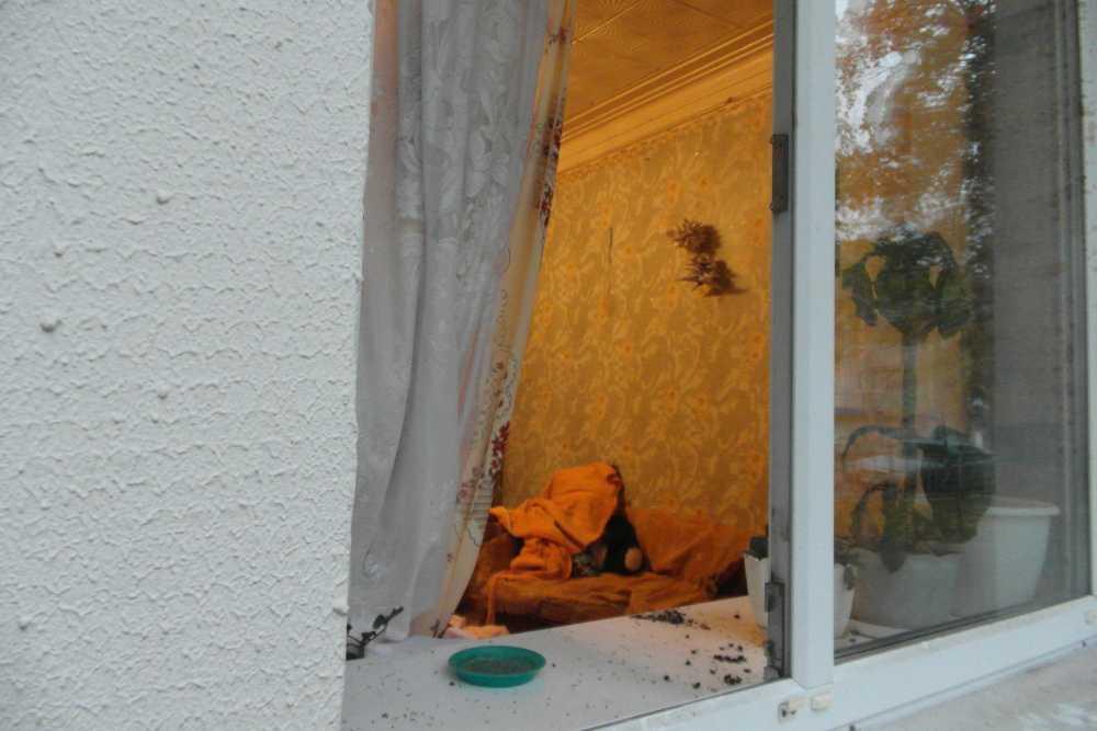 Труп брянской женщины месяц пролежал в квартире