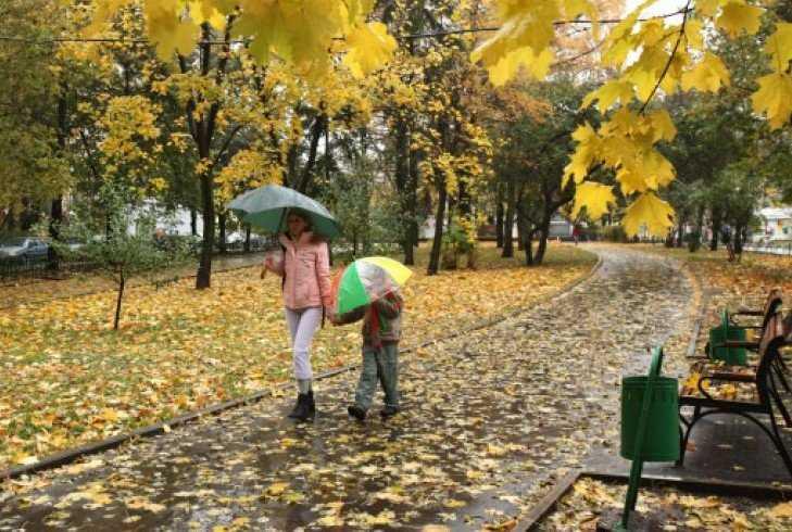 После гигантского циклона в Брянск вернутся заморозки