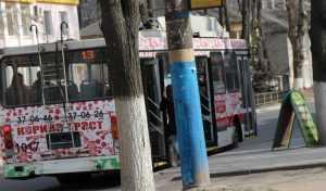 «Брянскэнергосбыт» пригрозил остановить троллейбусы 28 октября