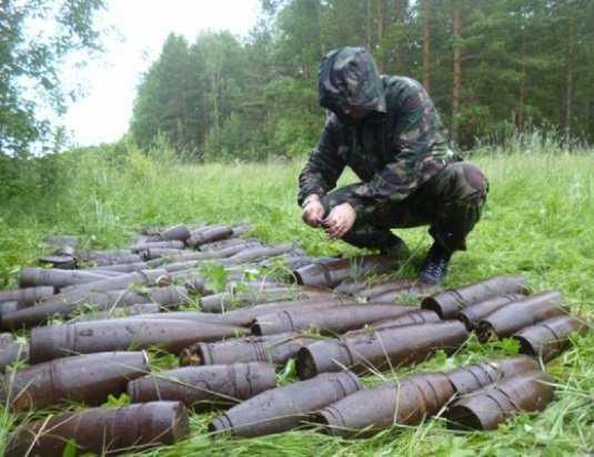 Возле брянской деревни обнаружили 55 снарядов