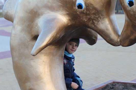 Брянские власти начали опрос об «уместности» дельфинов на набережной