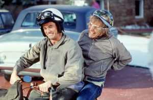 Брянского рецидивиста оштрафовали за пьяную езду на скутере