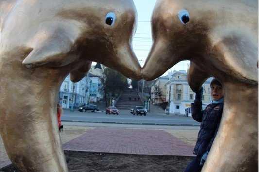 Нетерпимые брянцы злобно расправились с создателями дельфинов