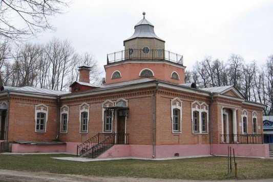 Толстой на слом: реконструкция брянской усадьбы поэта стала сражением
