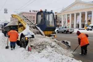Брянску придется срочно закупать технику для уборки тротуаров