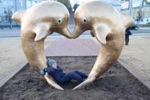 С набережной Брянска дельфинов перевезли к бассейну «Динамо»
