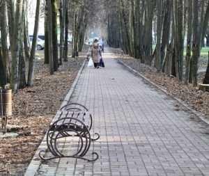 В Брянске на липовой аллее поставили убийственные скамейки