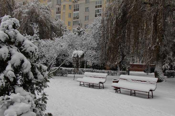 С понедельника Брянскую область начнет заметать снегом
