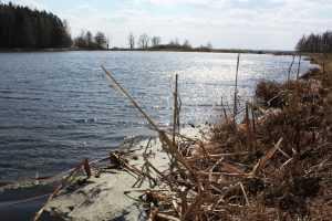 Брянский комбинат наказали за беспечное отношение к воде