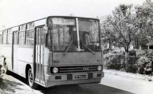 В Брянске изменилось расписание движения автобусов по двум маршрутам