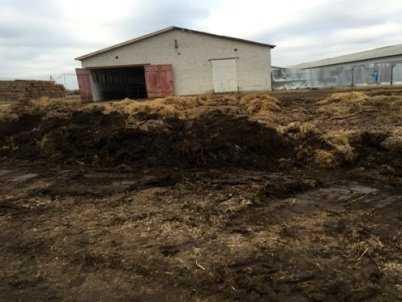 Деятельность брянской фермы Елены Дубининой частично приостановили