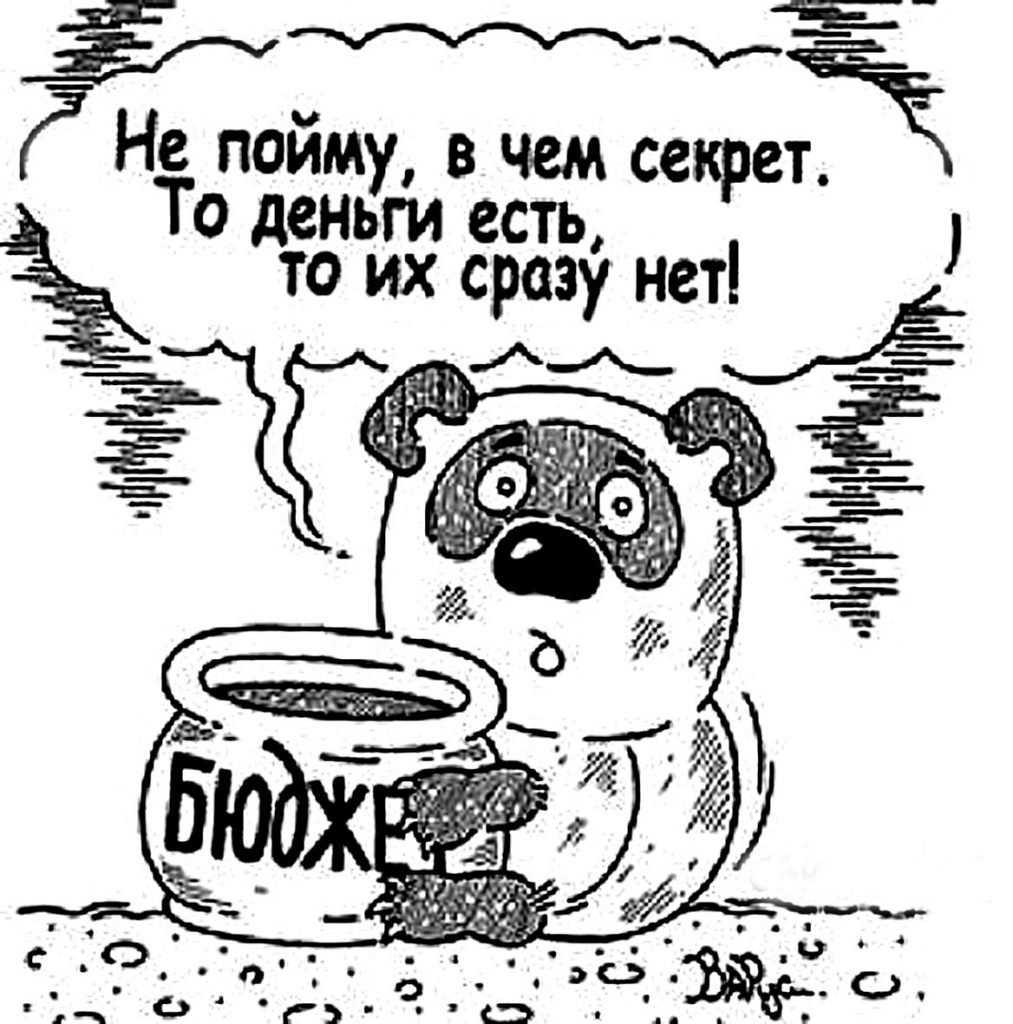 Бюджет Брянска не заинтересовал горожан