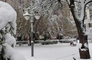 Брянская область побелеет от снега