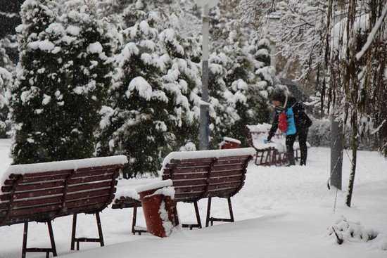 В течение недели в Брянской области будет идти снег