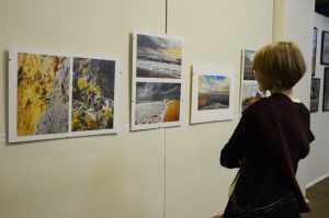 В Брянске открылась выставка фотографии «Все свои»