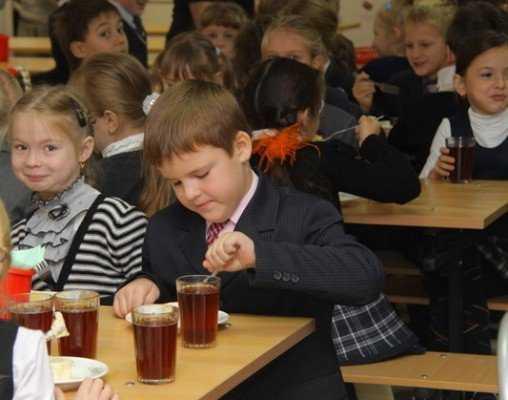 Брянские депутаты в два раза сократили дотации на школьные обеды