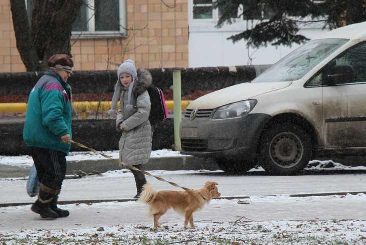Завтра в Брянске выпадет снег – до Нового года небо будет ясным