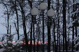 Новогоднюю ночь Брянск встретит при 11 градусах мороза
