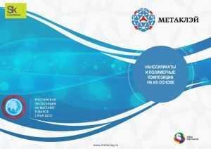 «Метаклэй» поднялся с брянской орбиты на мировую