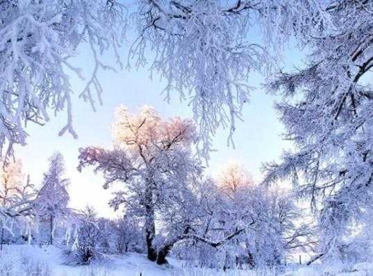 На Брянщине потеплеет и пройдёт снег