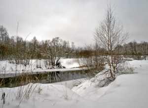 Завтра Брянщине пообещали мокрый снег и тепло