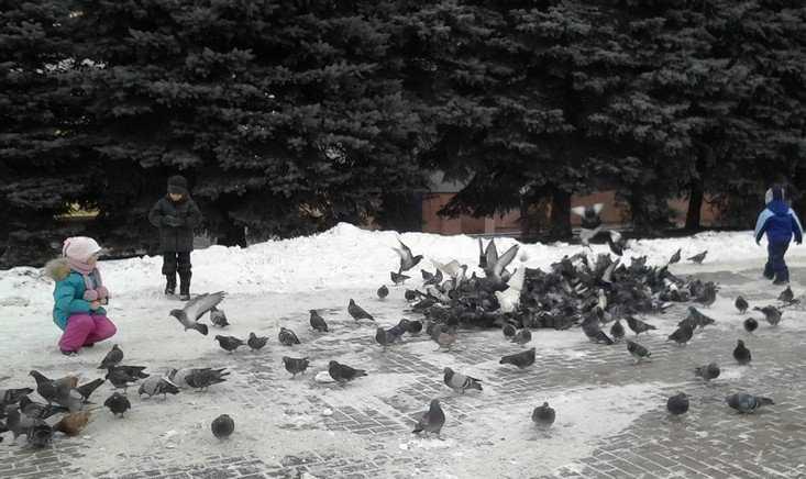 В Брянской области пойдет снег и ослабнут морозы