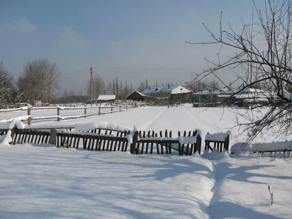 Брянщину накрыли снегопады