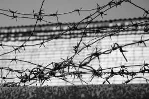 Осужденный брянец 8 месяцев добирался до колонии