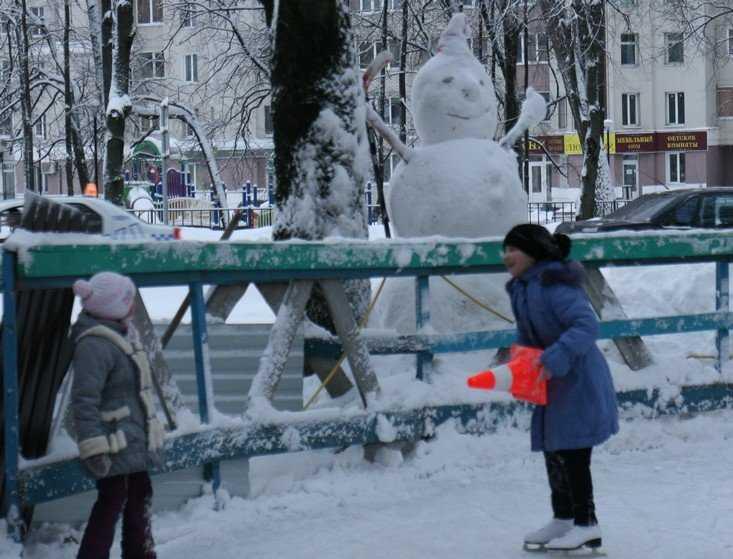 Морозы в Брянской области ослабнут до 5 – 10 градусов