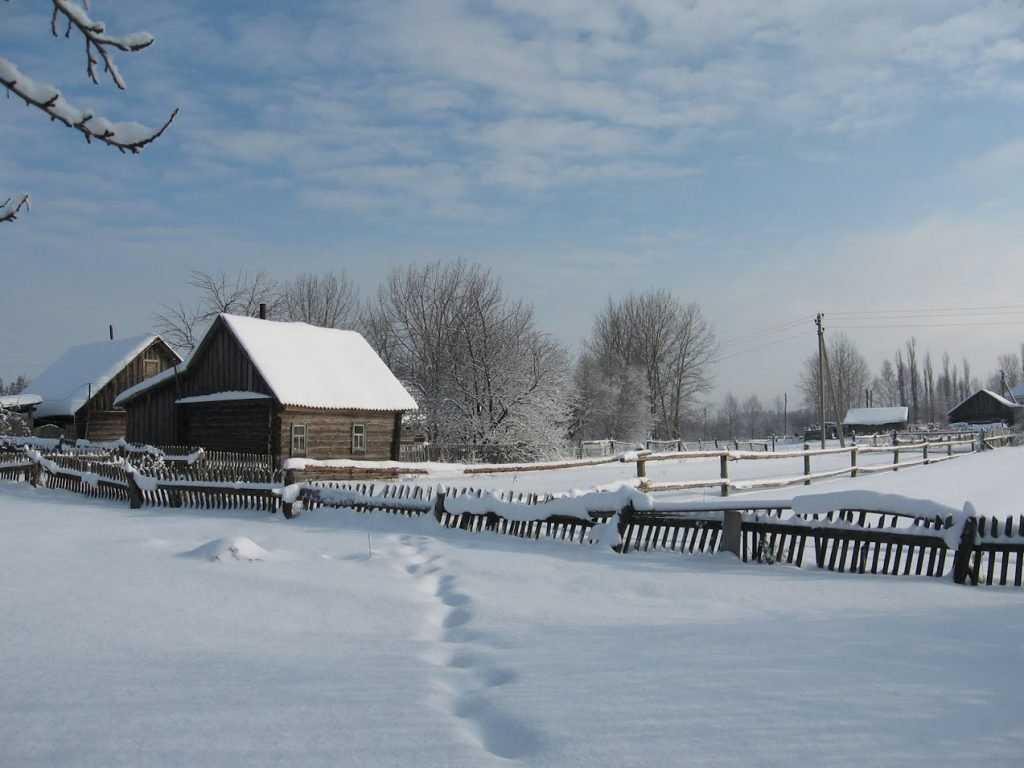 В Брянской области синоптики обещают аномально холодную погоду