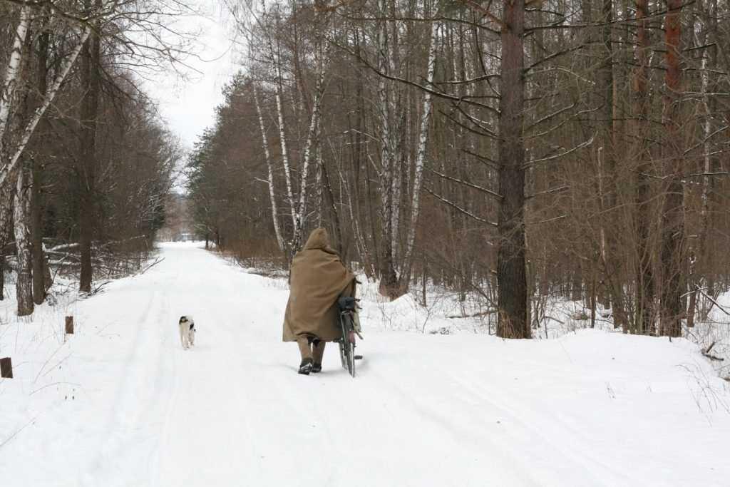 В Брянске на Татьянин день будет морозно