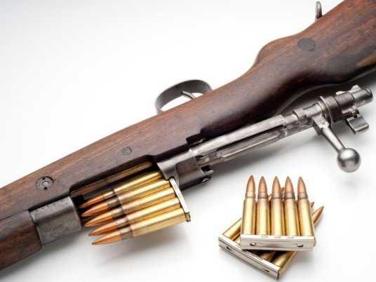 Брянцев осудили условно за сбыт винтовки и патронов