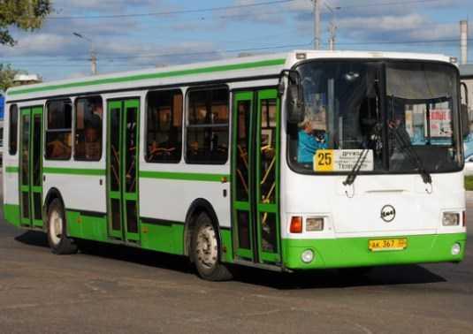 В брянском автобусе разбилась пенсионерка