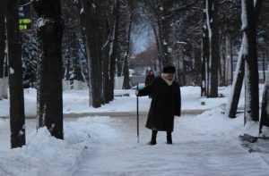 Брянских студентов бросят на снег