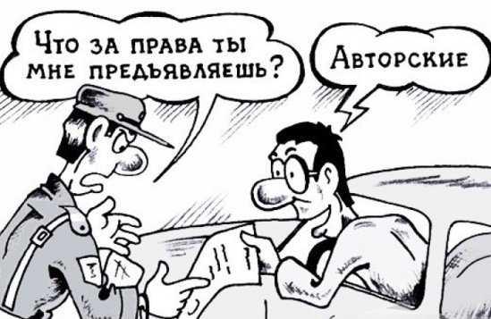 В Брянске поймали водителей с поддельными «правами»