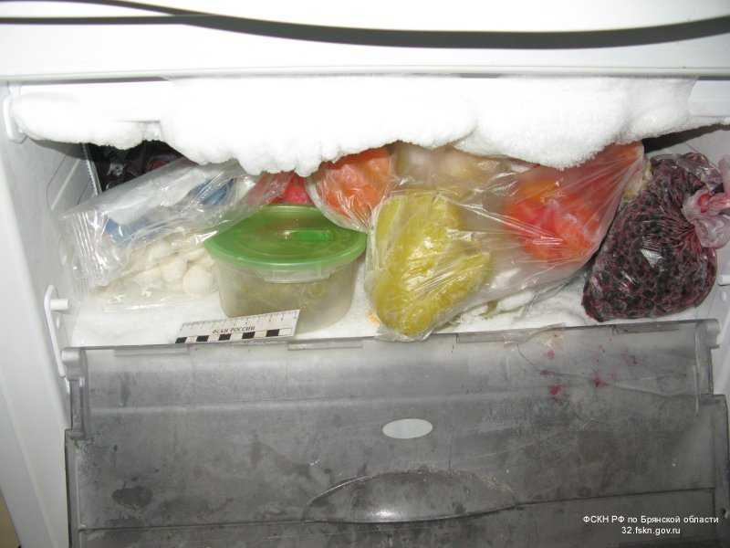 Жителя Брянска будут судить за гашиш в холодильнике и марихуану в подвале