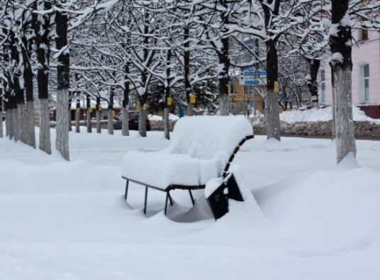 Февраль на Брянщине будет морозным