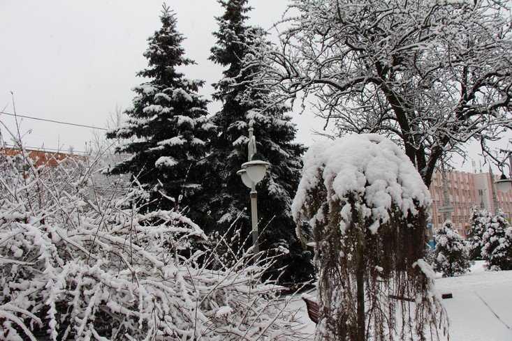 Брянскую область заметет снегом