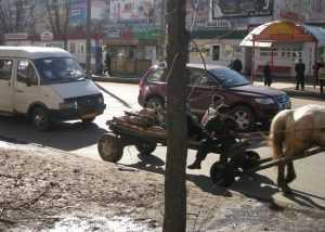 Число маршруток в Брянске урежут на треть