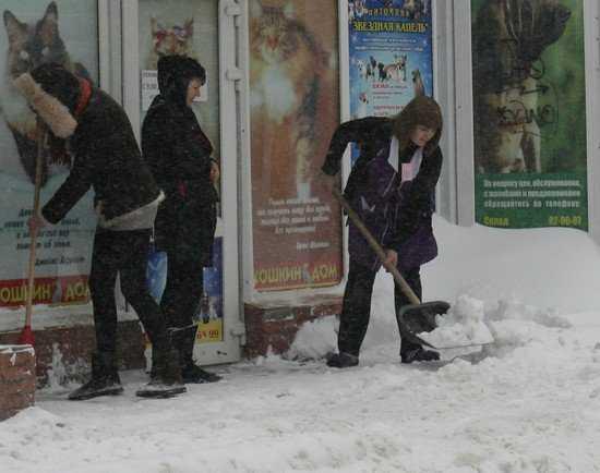 В конце февраля в Брянск вернется зима