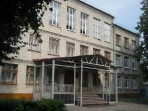 В Брянске грипп не позволил открыть пять школ