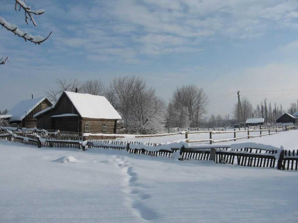 В Брянской области ожидается снег с дождем