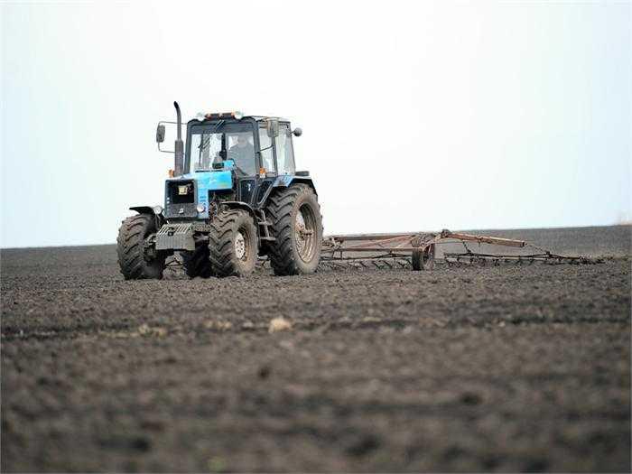 Брянский филиал Россельхозбанка увеличил кредитование полевых работ