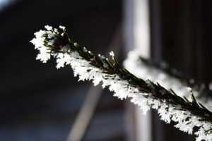 Зима вернётся на Брянщину в начале марта