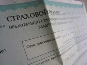 Из-за фальшивок брянским автовладельцам придется менять полисы ОСАГО