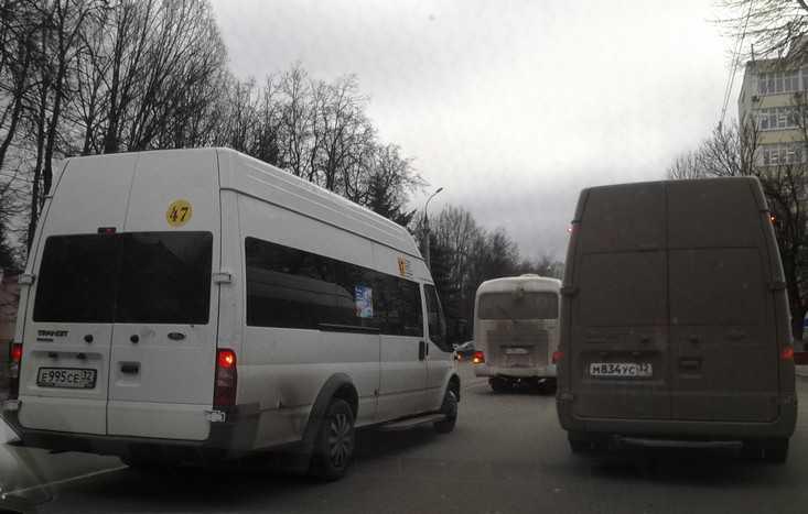 Кучера превратили Брянск в зону анархии