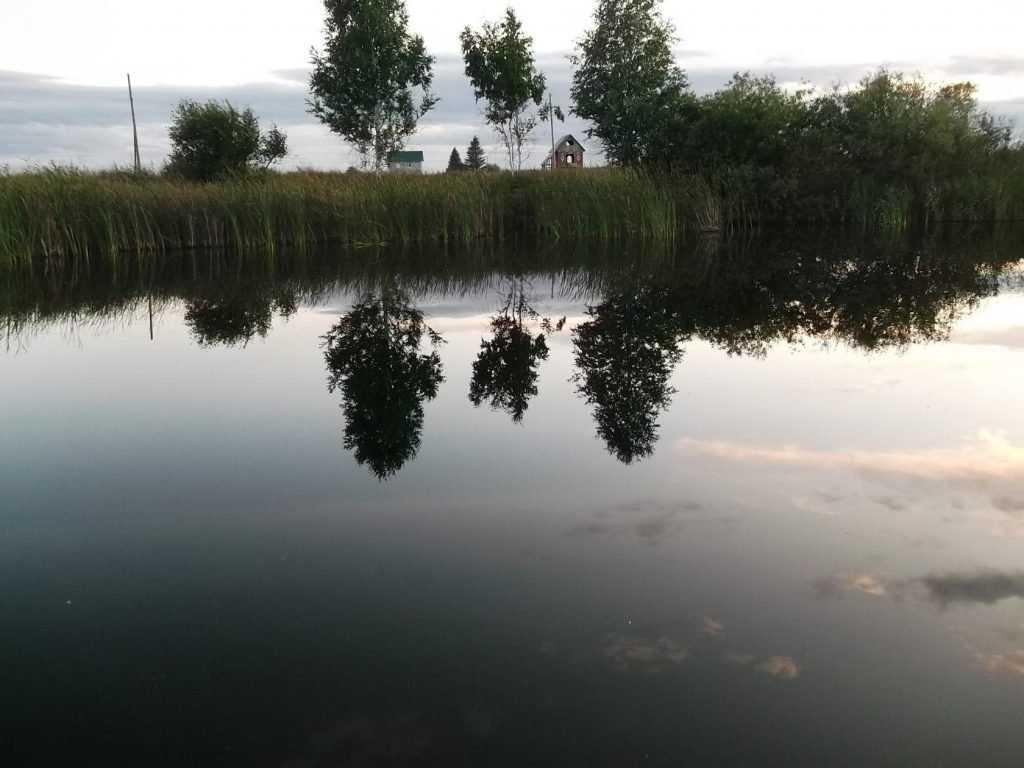 Убийце застреленного и брошенного в реку брянца дали 11 лет