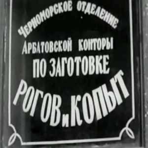 Отмывочные «Рога и копыта» в Брянской области стали закрываться